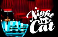 pos_user_night_cat